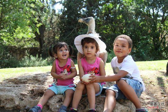 耶路撒冷圣经动物园内孩童与小动物亲密互动