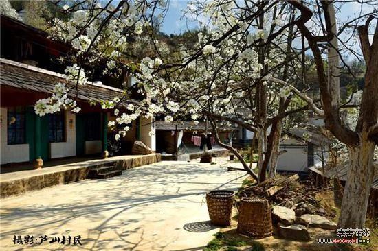 无量山黄草岭(摄影:芦山村民)