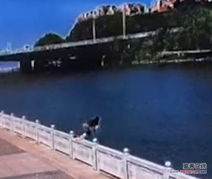 赞!嘉兴一协警跳水勇救轻生女子和她丈夫