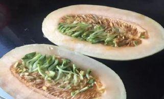 嘉兴女子买回哈密瓜 打开后发现长满绿豆芽